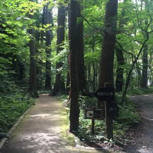 十和田湖4 開運の小道1